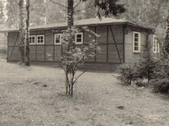 Tannenhecke - 1980