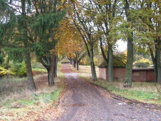 Blick durch die Kastanienallee zum Helenhaus