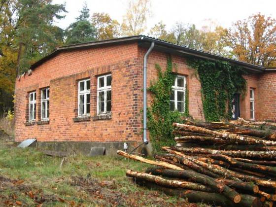 LW - Ruine des alten, komb. Wohn- und Witrschaftsgeb.