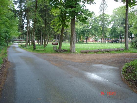 Zum Immenhof - 3