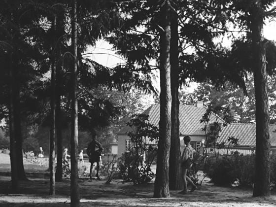 Immenhof Vor Der Verwaltung2