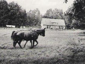 Wohnhaus - LW - 1952 erb.