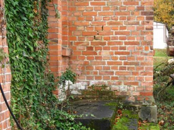 LW - Ru. - Eingang zum alten Wohnhaus - LW - die Natur ist auf dem Vormarsch