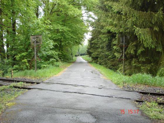 Zum Immenhof - 2