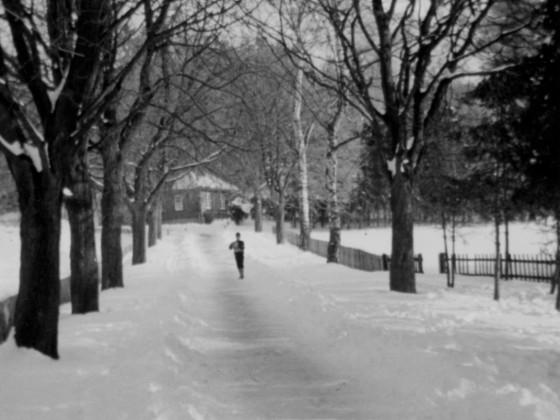 Die Kastanienallee mit Blick zum Helenhaus