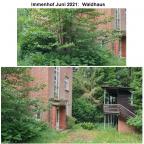 12 Immenhof 2021 -Waldhaus