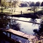 Die Brücke am alten Ententeich
